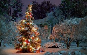 christmas-tree-wallpaper-image