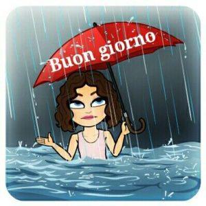 Buongiorno Piovoso